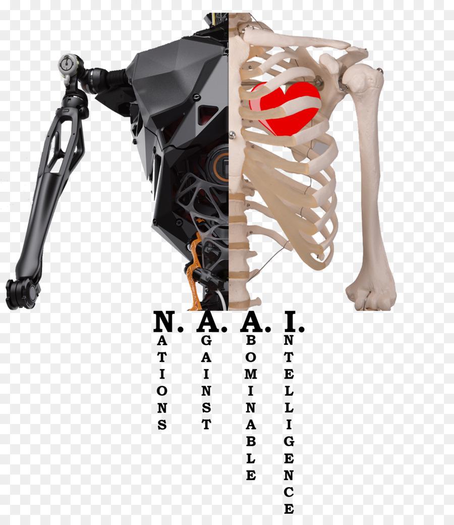 Human Skeleton Human Body Anatomy Science Skeleton Png Download
