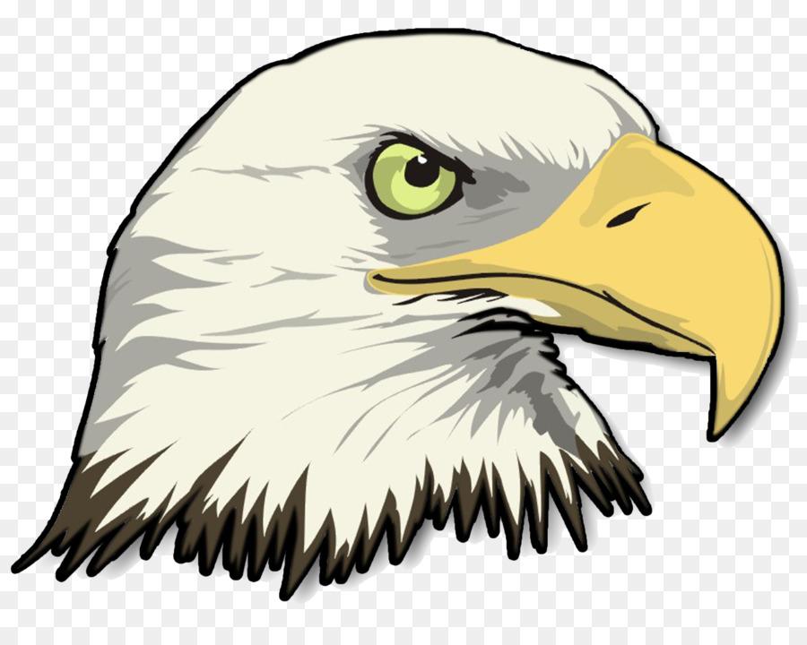 bald eagle drawing clip art eagle png download 1267 998 free rh kisspng com flying bald eagle clipart bald eagle head clipart