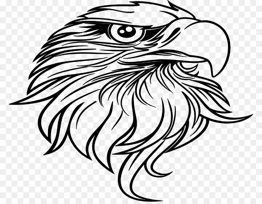 Owl Black And White Png Clipart Snowy Bald Eagle Bird Wildlife