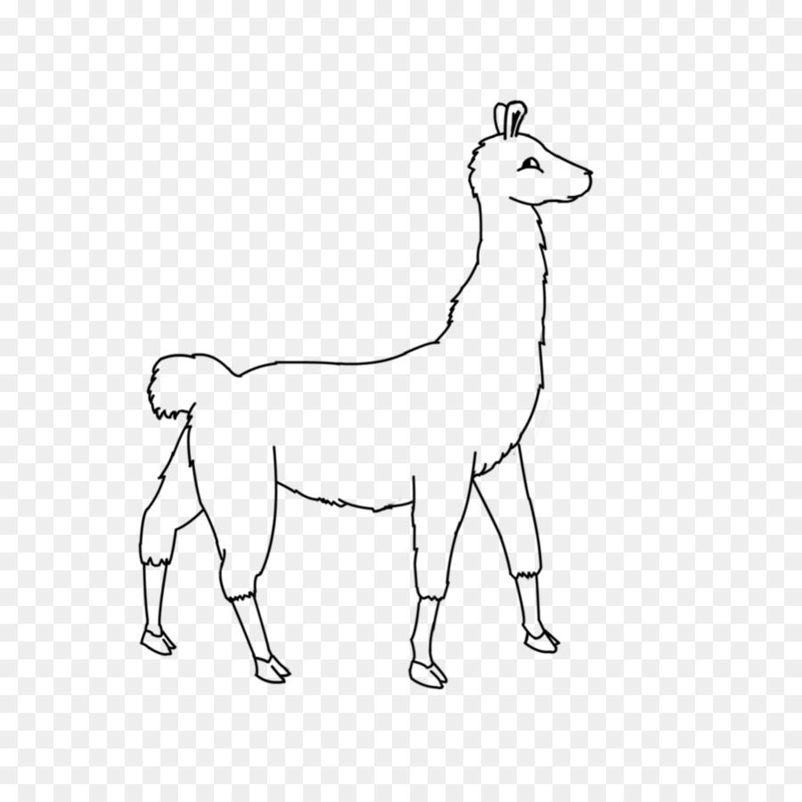 Llama Cartoon png download - 901*886 - Free Transparent Line