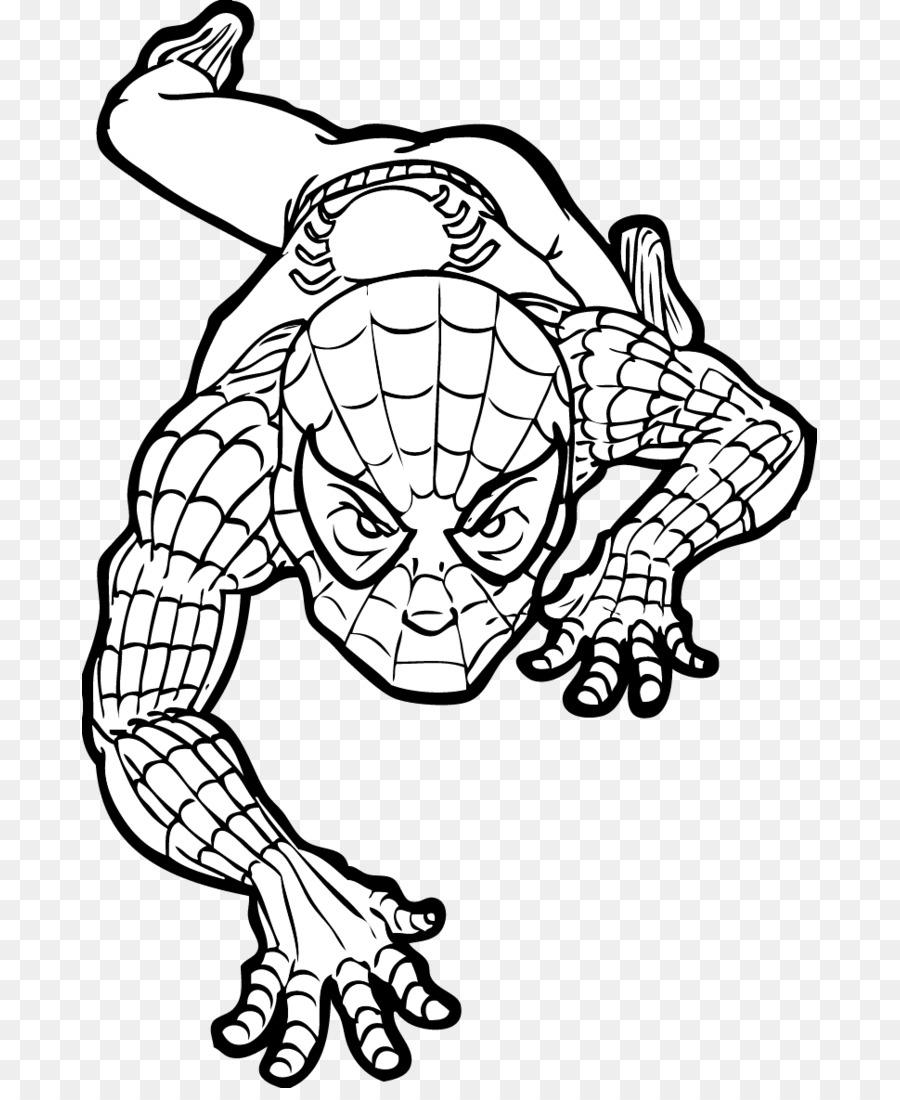 Spider Man Deviantart Visual Arts Spiderman Da Colorare Png