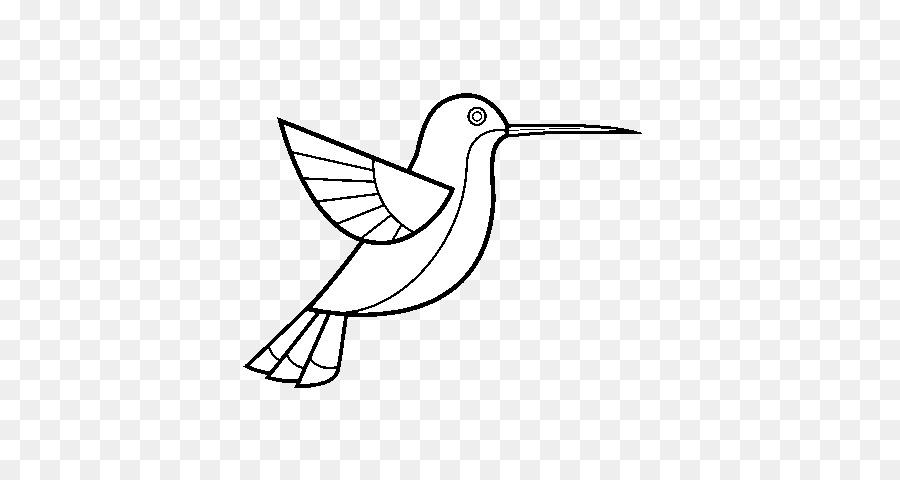 Colibrí Dibujo para Colorear libro - Aves png dibujo - Transparente ...