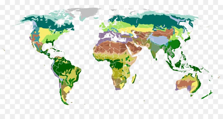 World map biome vegetation world map formatos de archivo de imagen world map biome vegetation world map gumiabroncs Images