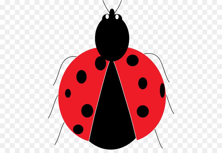ladybird beetle drawing clip art beetle png download 512 608