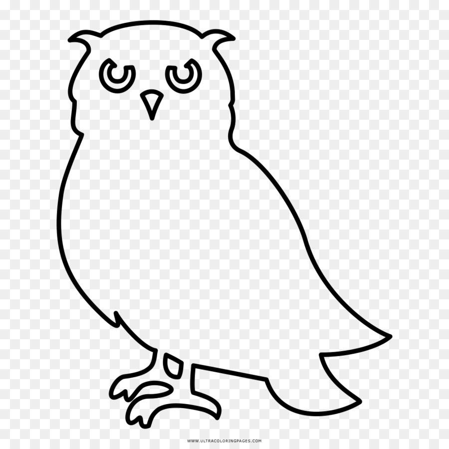 Sedikit Burung Hantu Hitam Dan Putih Menggambar Buku Mewarnai Burung Hantu