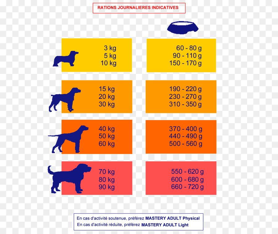 Color Scheme Paint Yellow Color Chart Paint Png Download 600751