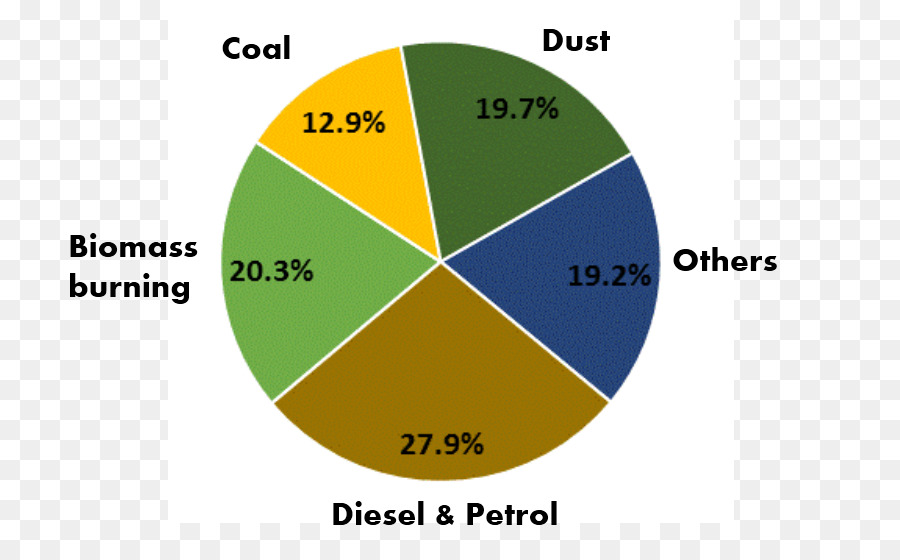 Air Quality In Delhi Air Pollution In India Pie Chart Air