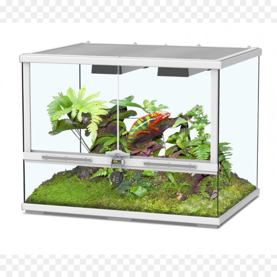 Terrarium Pets Reptile Vivarium Glass Brand Line Png Download