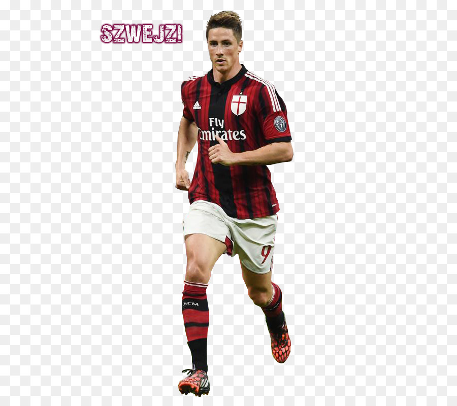 Fernando Torres confirms move to Sagan Tosu as he joins Andres Iniesta in Japan despite rival bids We have had offers from every continent Fernando Torres had been