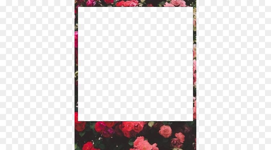 Picture Frames Kodak Photography Polaroid Corporation Pattern ...