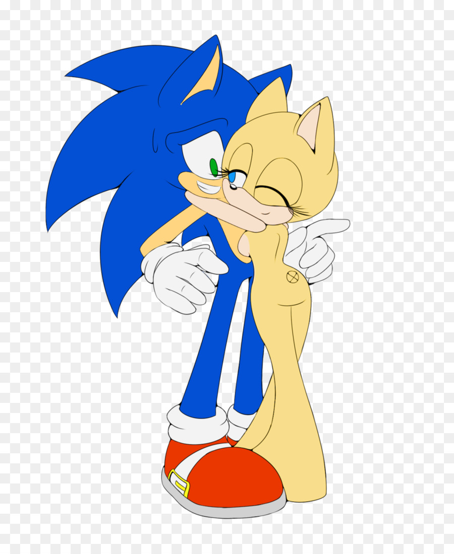Sonic The Hedgehog Sonic X Canidae Base Couple Holding Hands Png