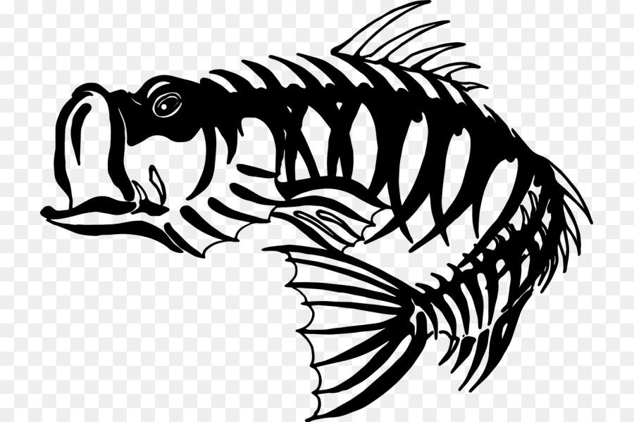 Pesca de la lubina Esqueleto de la Lobina negra - Esqueleto Formatos ...