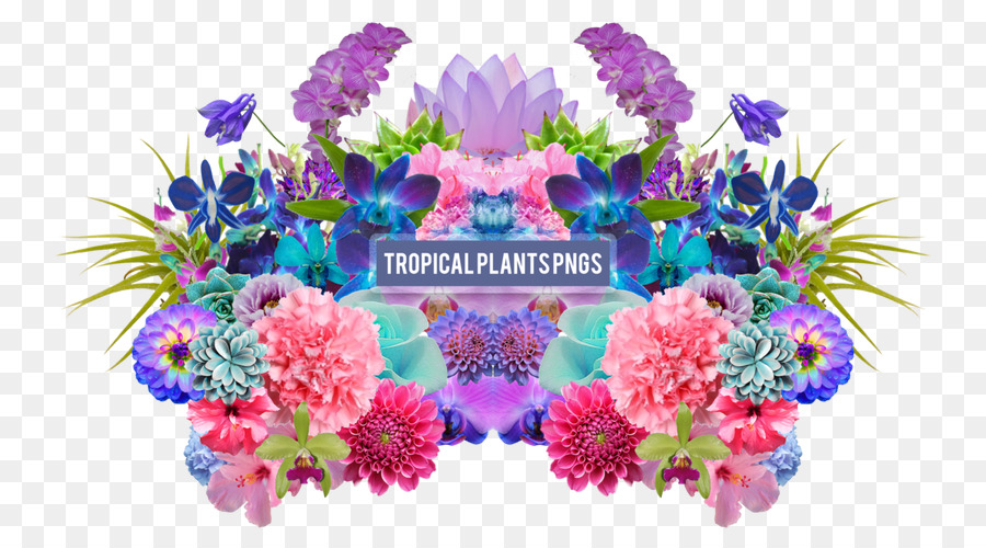 Floral Flower Background Drawing Summer Tropical Plants Png