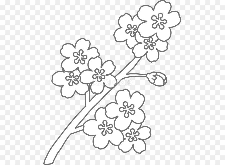 Libro para colorear de diseño Floral en blanco y Negro - sakura flor ...