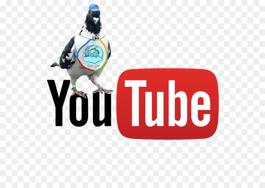 GRATUIT TÉLÉCHARGER VIDEO YOUTUBE RTMP