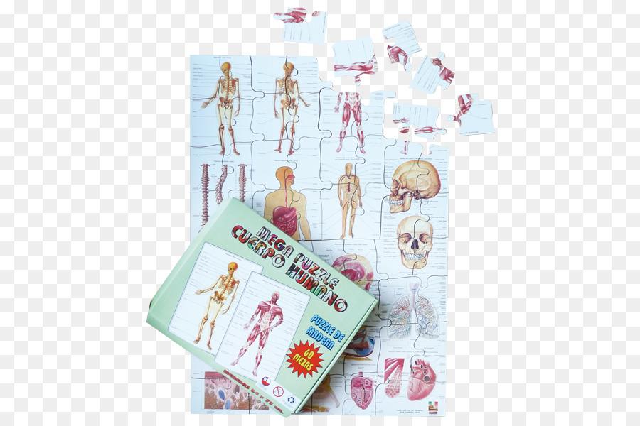 Material Mega Rompecabezas del cuerpo Humano 1, 2, 3 Juego - cuerpo ...