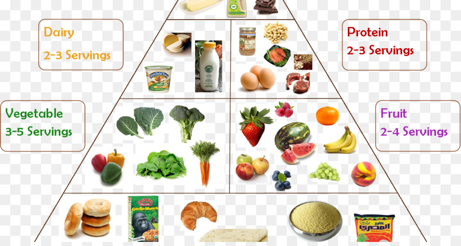 Vegetarian Cuisine Food Group Chart T Health Png 1128 592 Free Transpa