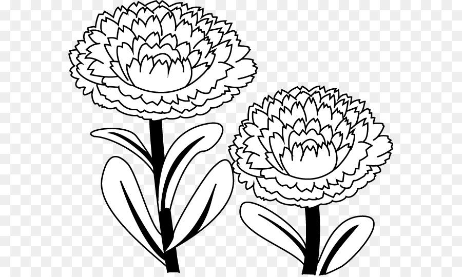 çiçek Tasarımı Calendula Otu Boyama Kitabı çizim çiçek Png Indir