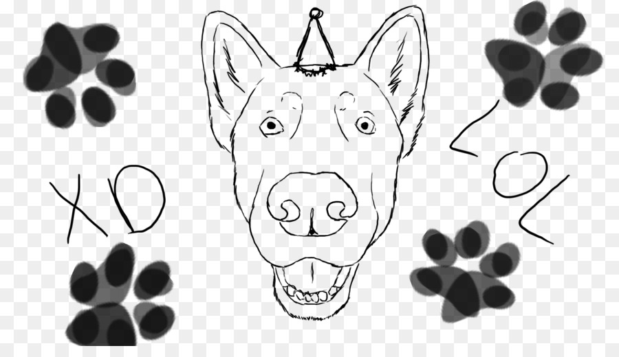 Kumis Anjing Desktop Wallpaper Gambar Kucing Lol Wajah Unduh