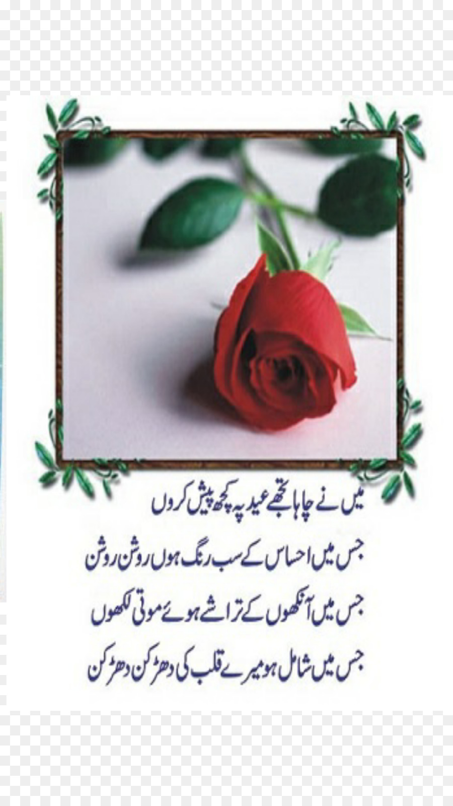Urdu Poetry Eid Al Fitr Eid Al Adha Good Morning Poetry In Urdu