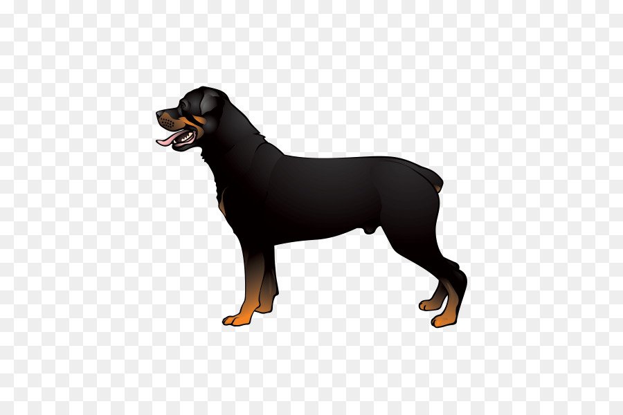 Boxer Australian Cattle Dog Rottweiler Jack Russell Terrier Cane Corso    Silhouette