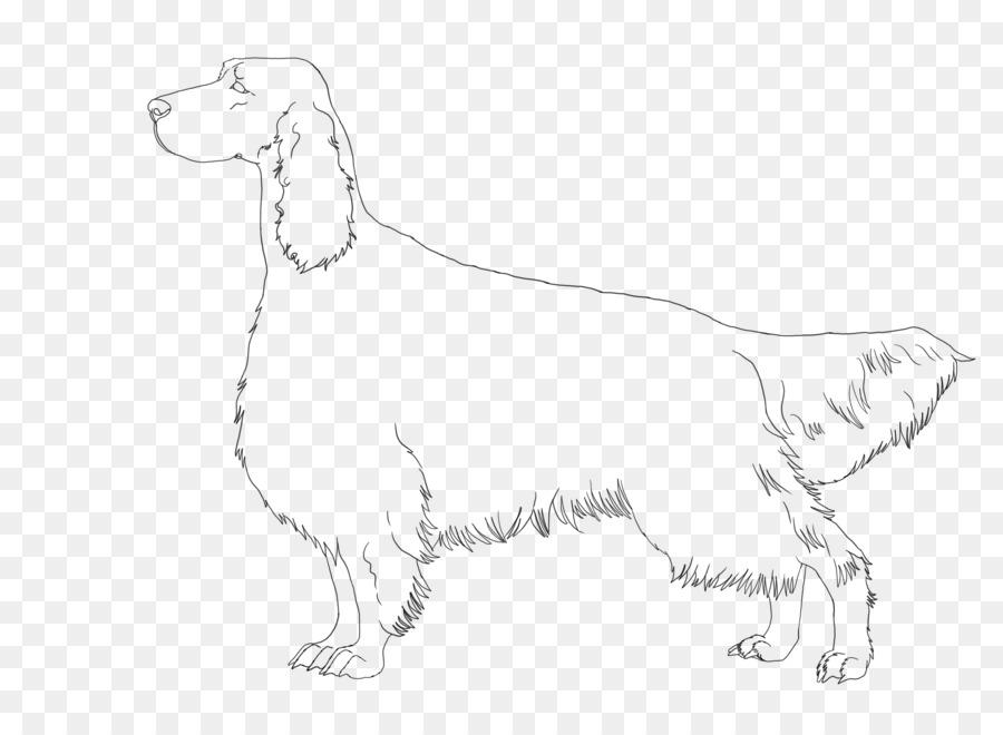 Dog Breed Retriever Sporting Group Spaniel Companion Dog