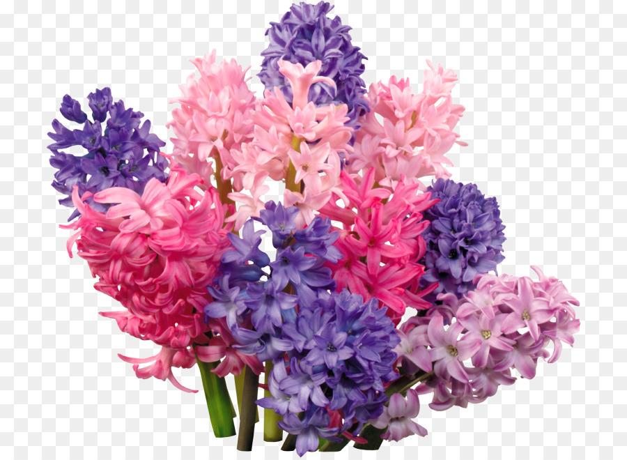 Hyacinth Floral design Flower bouquet Telegram - flower png download ...
