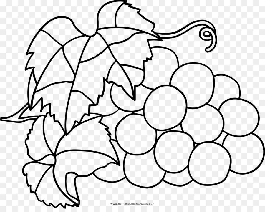 Buku Mewarnai Anggur Gambar Anggur Unduh Putih Hitam Hitam Dan