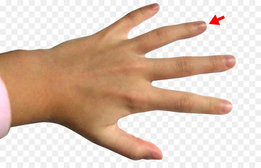 Ring Finger Middle Finger Index Finger Ring Png Download 900572