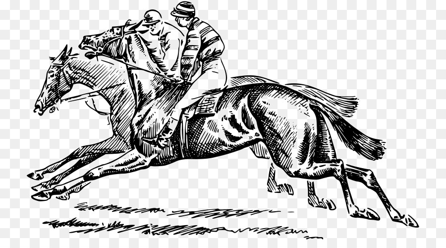 Thoroughbred The Kentucky Derby Pony Horse Racing Equestrian