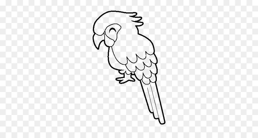 Loro Pájaro Militar guacamayo Dibujo para Colorear libro - loro png ...