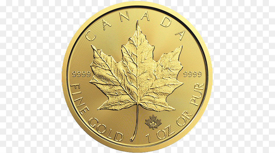 Canada Maple Leaf png download - 500*500 - Free Transparent