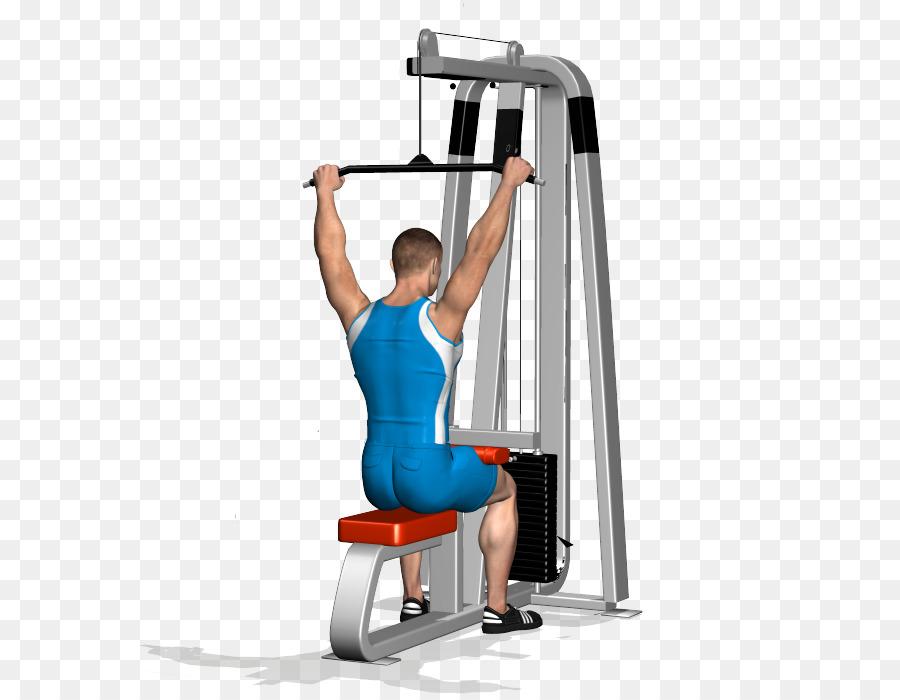 Telecine ejercicio de entrenamiento de Peso músculo Dorsal ancho ...