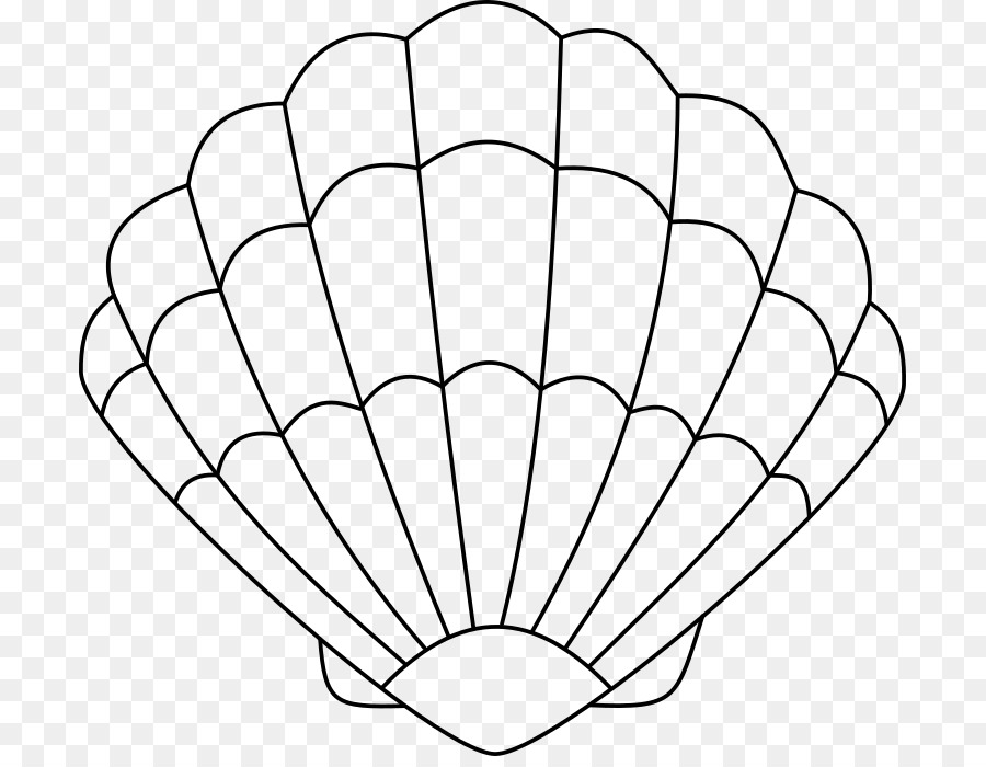 Seashell Coloring Book Drawing Oyster Seashell Png Download 755