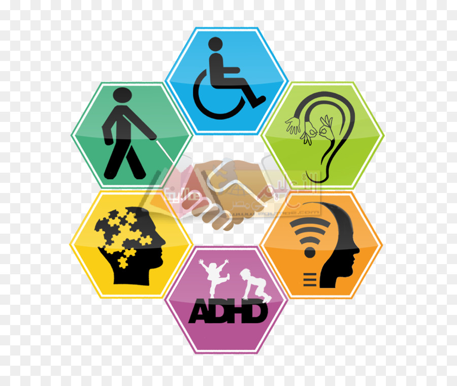 United Arab Emirates Disability Special Needs Education Health Care