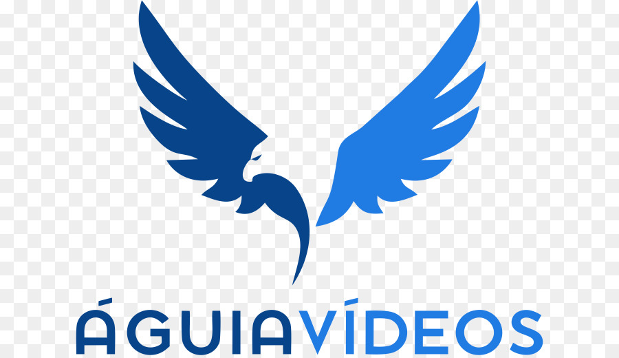 Bald Eagle Bird Golden Eagle Bird Png Download 680516 Free