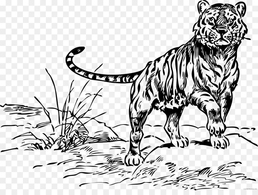Tiger Cat Coloring book Lion Clip art - tiger png download - 2400 ...