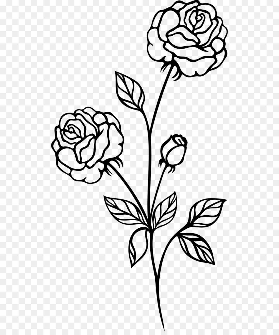 Drawing Rose Clip Art Rose Clipart Black And White Transparent Png