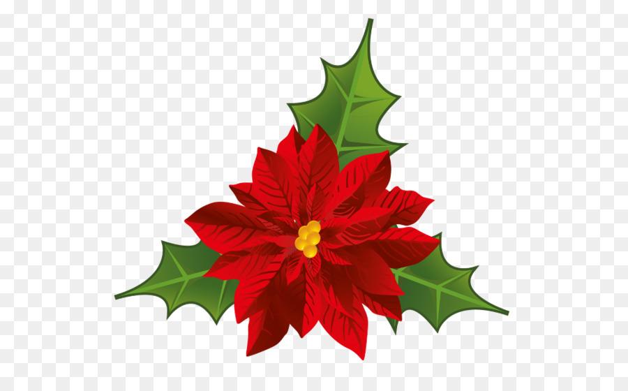 poinsettia flower christmas clip art flower png download 600 541 rh kisspng com free poinsettia clip art images free poinsettia clip art flowers