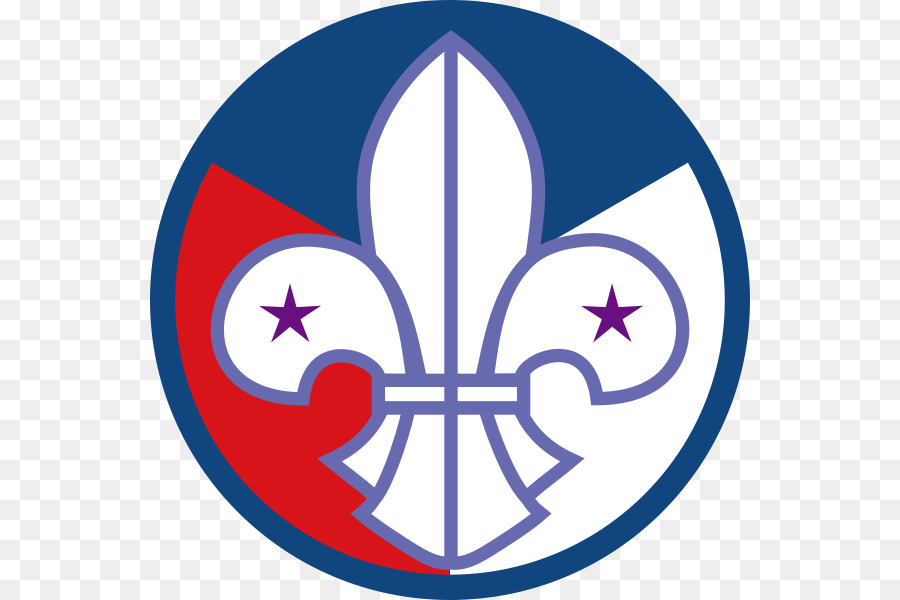 Scouting For Boys World Scout Emblem Boy Scouts Of America Cub Scout