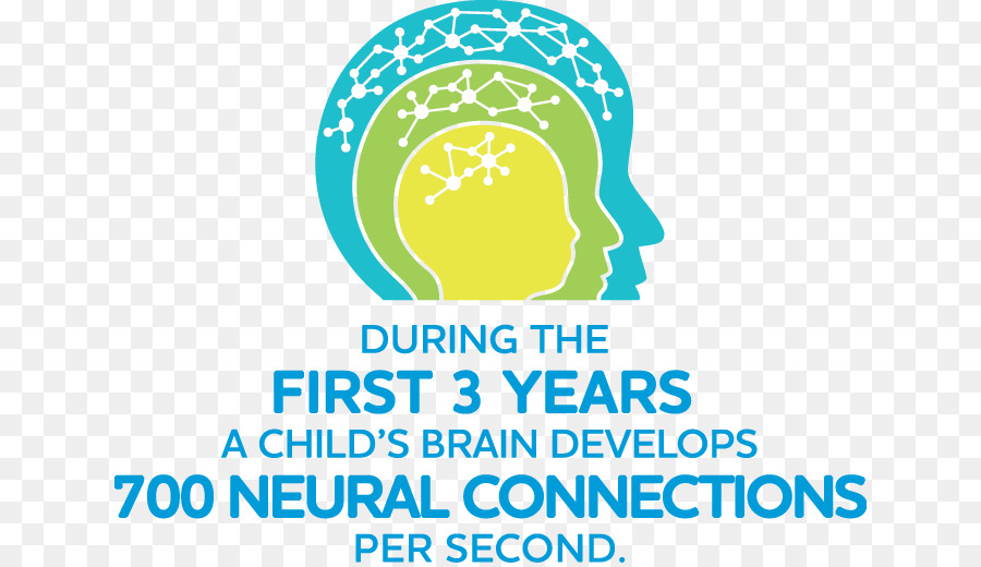 child development infant early childhood brain child