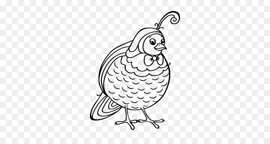 Aves de Dibujo del pájaro Carpintero de libro para Colorear Pintar ...