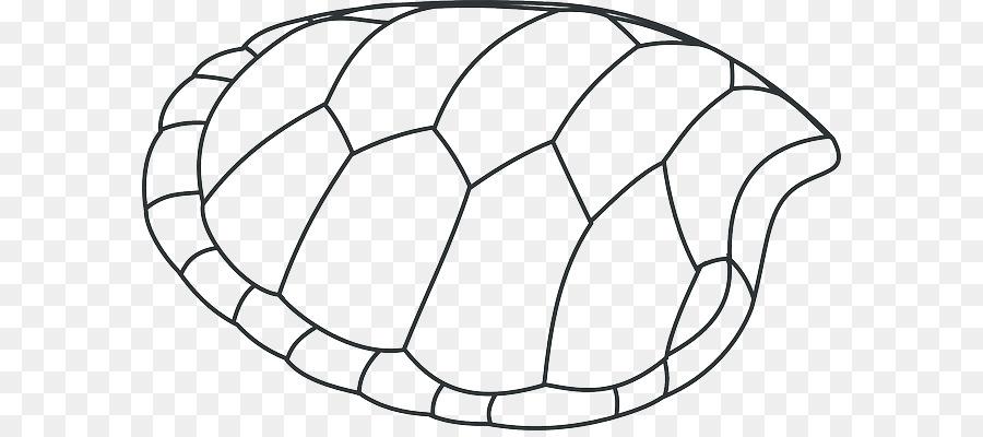 Kaplumbağa Kabuğu Küçük Resim çizimi Yeşil Kabukları Png Indir