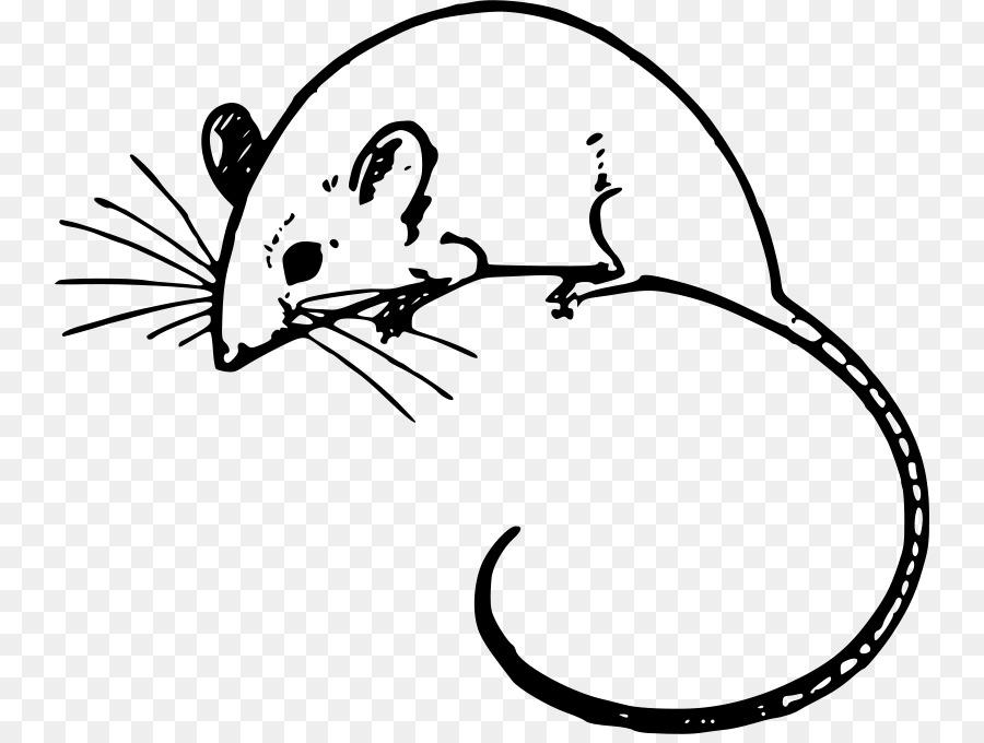 computer mouse arc mouse microsoft mouse clip art computer mouse rh kisspng com clip art mouse with snowball clip art mouse ears