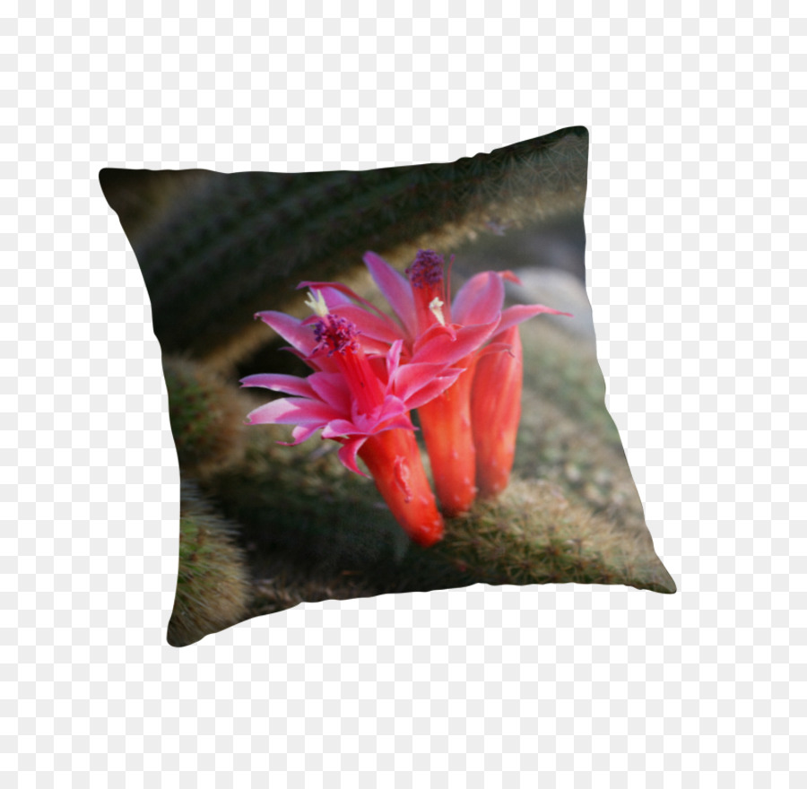 Throw Pillows Cushion Flower Pillow Png Download 875875 Free