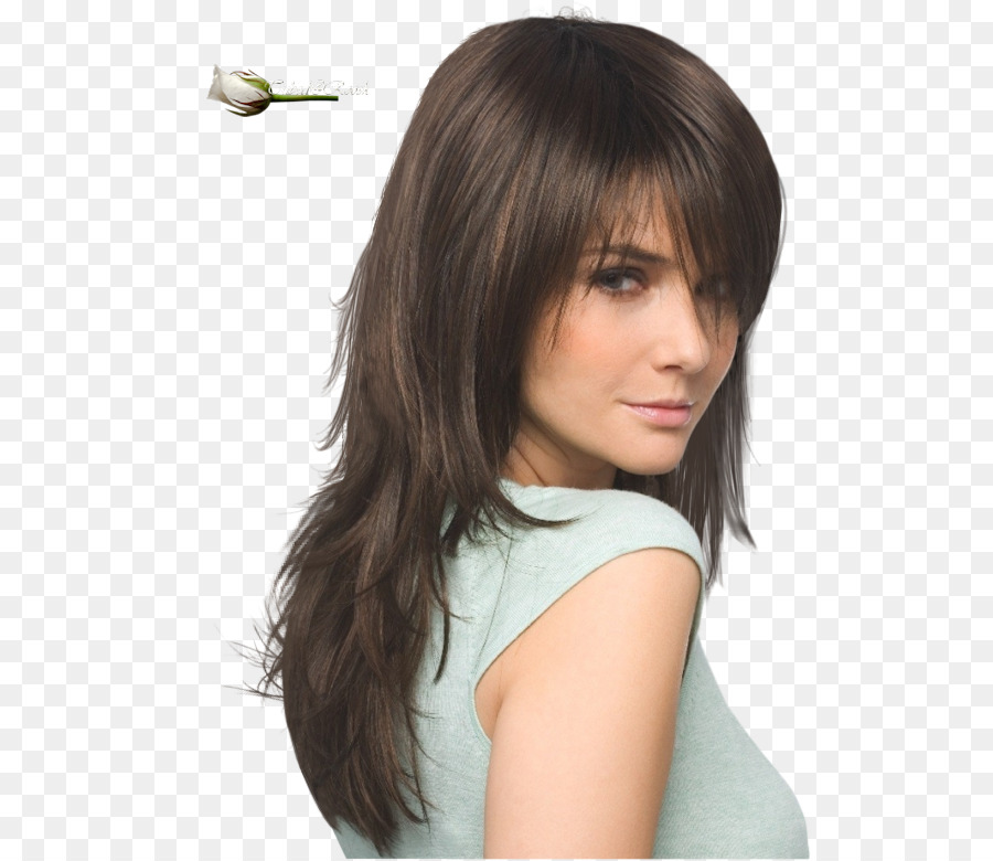Hairstyle Bangs Layered Hair Long Hair Hair Png Download 570780