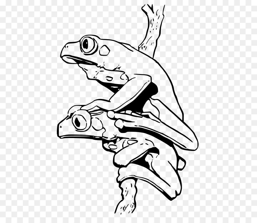 Blue poison dart frog libro para Colorear de Fresa veneno de rana de ...