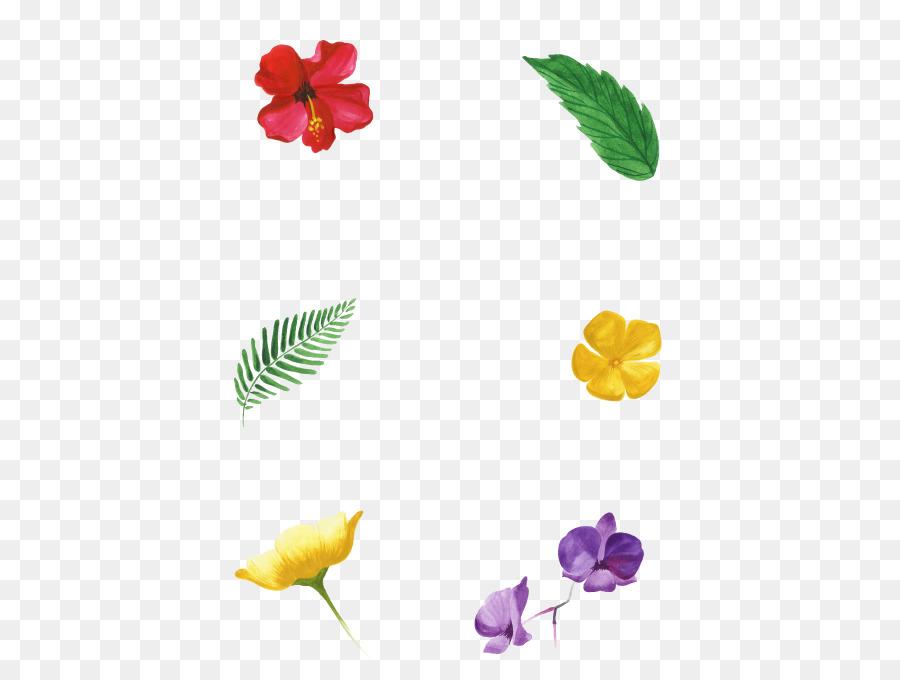 Wedding Invitation Petal Flowering Plant Convite Tropical