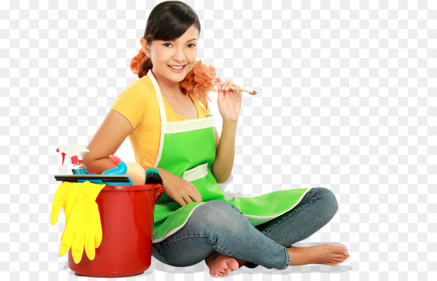 maid service cleaner domestic worker molly maid cleaning services