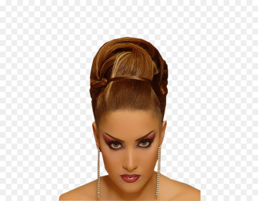 Hairstyle Bouffant Updo Fashion Hair Png Download 500700 Free